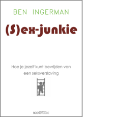 (sex)-junkie - Ben Ingerman
