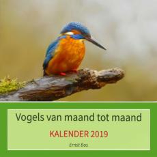 Kalender: Vogels van maand tot maand