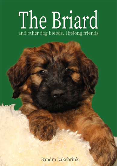 The Briard and other dog breeds, lifelong friends